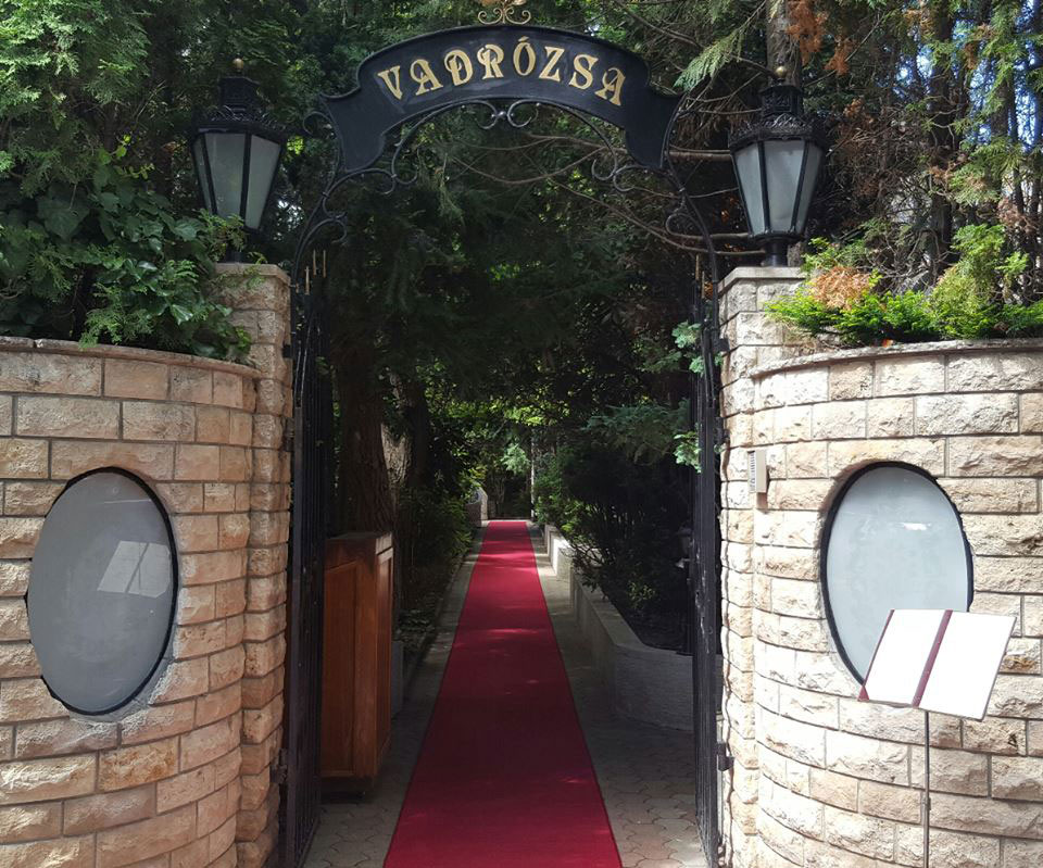 vadrozsa_kapu